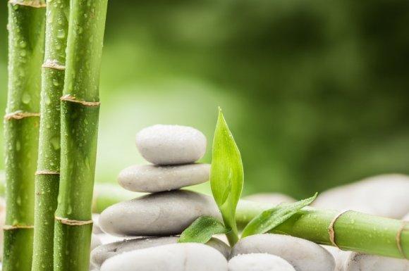 Masseuse, thérapeute corporelle et formatrice à la gestion du stress Lyon